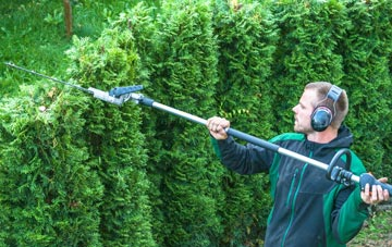 West Midlands hedge trimming costs