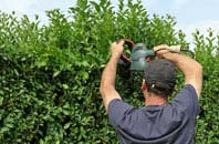 free West Midlands hedge trimming quotes