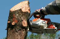 free West Midlands tree removal quotes